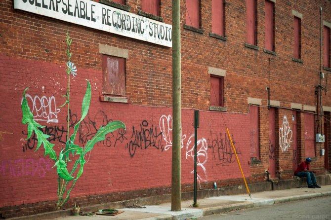 murales graffitti marijuana 9