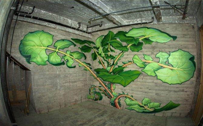 murales graffitti marijuana 10