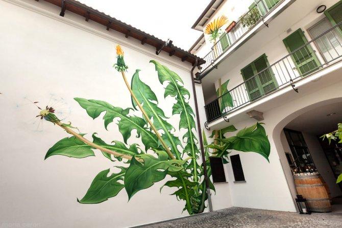 murales graffitti marijuana 1