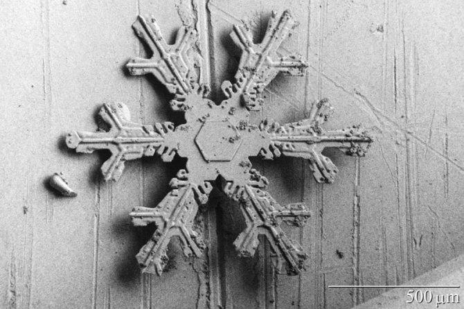fiocchi neve microscopio elettronico 11