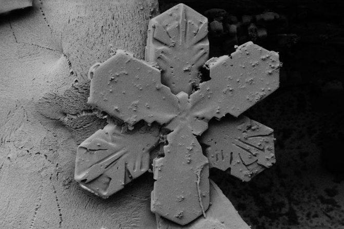 fiocchi neve microscopio elettronico 14
