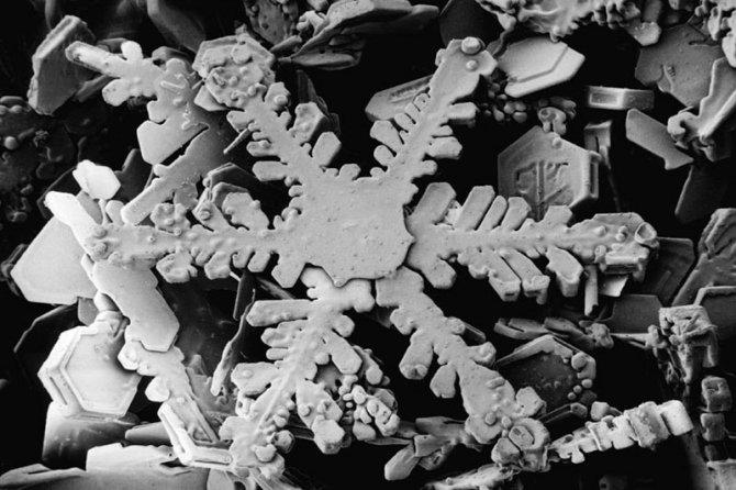 fiocchi neve microscopio elettronico 3