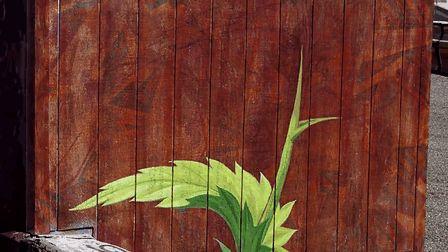 murales graffitti marijuana 2