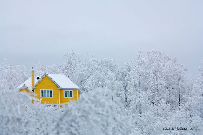 winter houses 8 880
