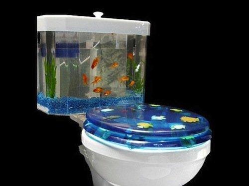 8 fishbowl aquarium toilet