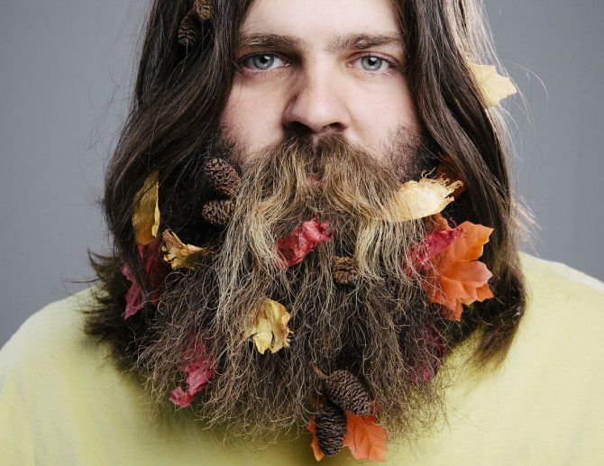 A Beard For All Seasons2 880