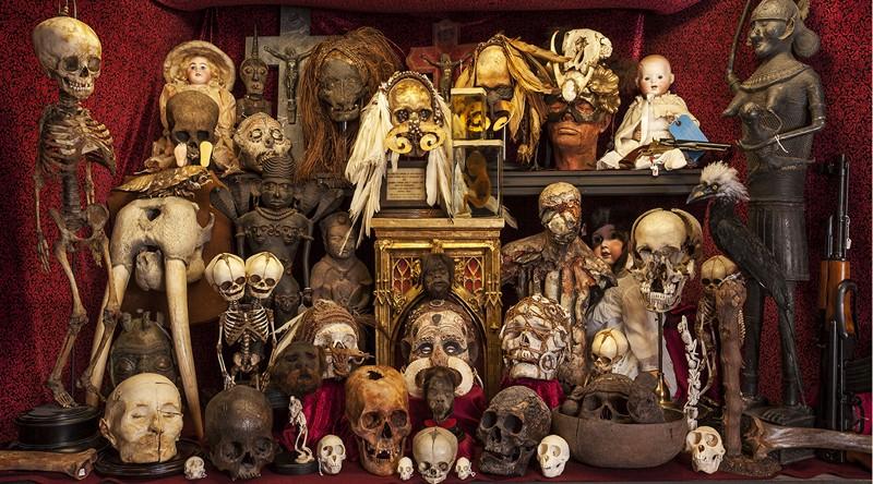 Il museo più strano, curioso e bizzarro del mondo si trova a Londra