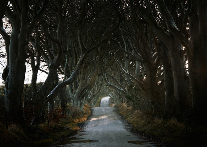road landscape photography andy lee 7