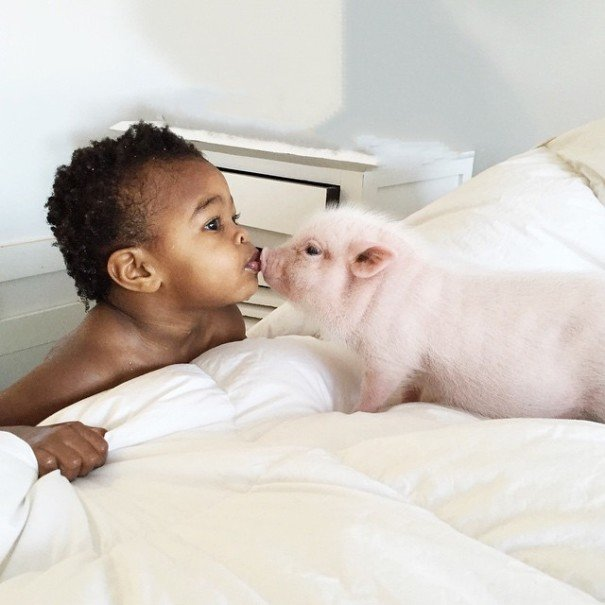 little girl piglet friendship libby and pearl 1 605x605