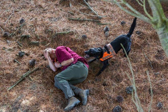 working dog photography shepherds realm andrew fladeboe 19