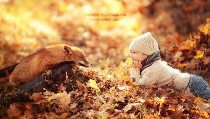 animal children photography elena karneeva 122 880