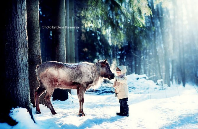 animal children photography elena karneeva 132 880