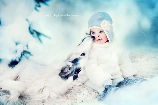 animal children photography elena karneeva 142 880
