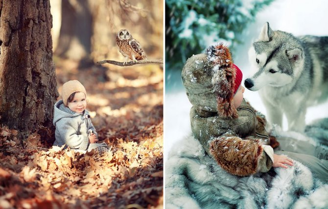 animal children photography elena karneeva 232 880