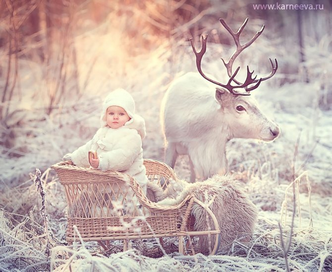 animal children photography elena karneeva 92 880