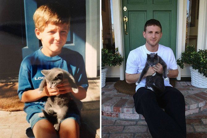 before and after growing up cats 52 880