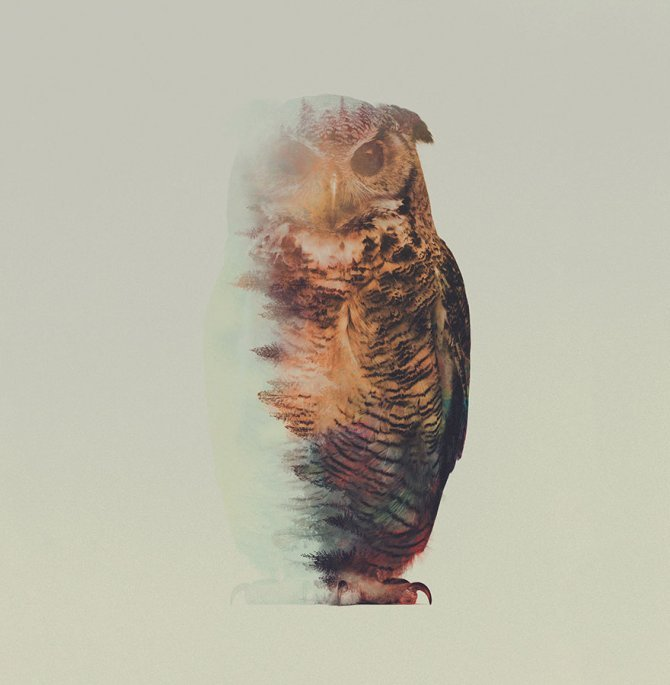 double exposure animal photography andreas lie 11 880