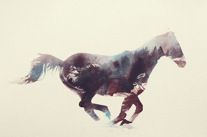 double exposure animal photography andreas lie 18 880