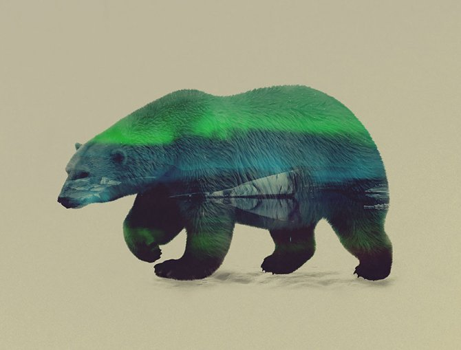 double exposure animal photography andreas lie 5 880