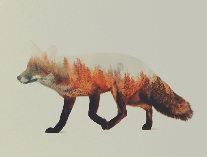 double exposure animal photography andreas lie 7 880