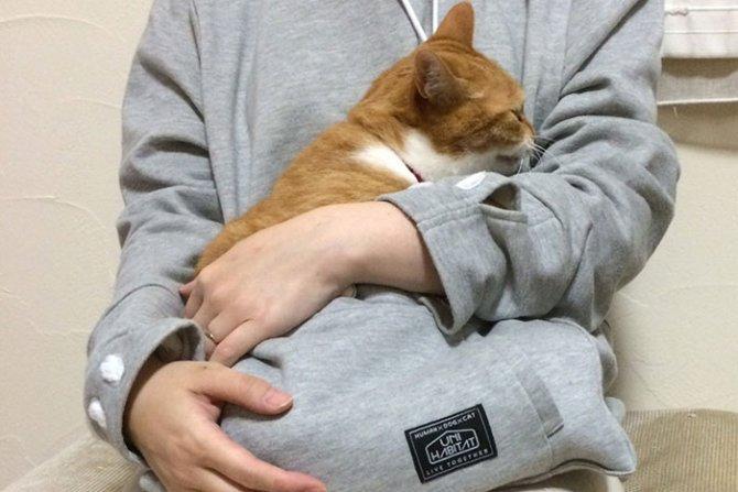 hoodie cat pouch pocket sweatshirt mewgaroo 10