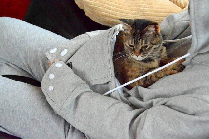 hoodie cat pouch pocket sweatshirt mewgaroo 13