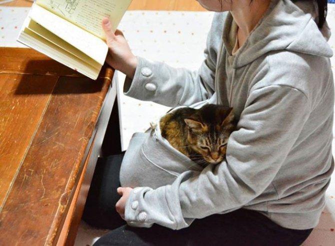hoodie cat pouch pocket sweatshirt mewgaroo 14