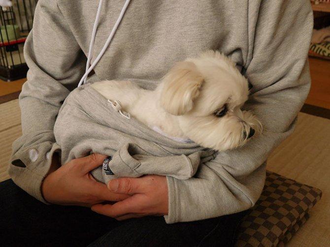 hoodie cat pouch pocket sweatshirt mewgaroo 3