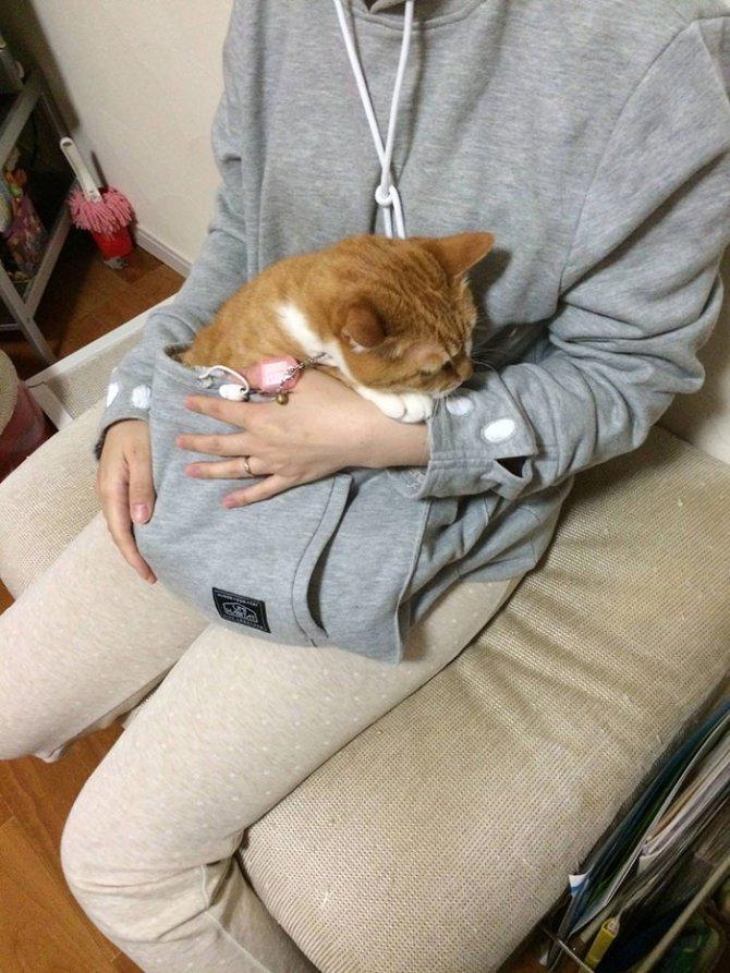 hoodie cat pouch pocket sweatshirt mewgaroo 4