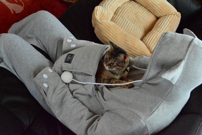 hoodie cat pouch pocket sweatshirt mewgaroo 5