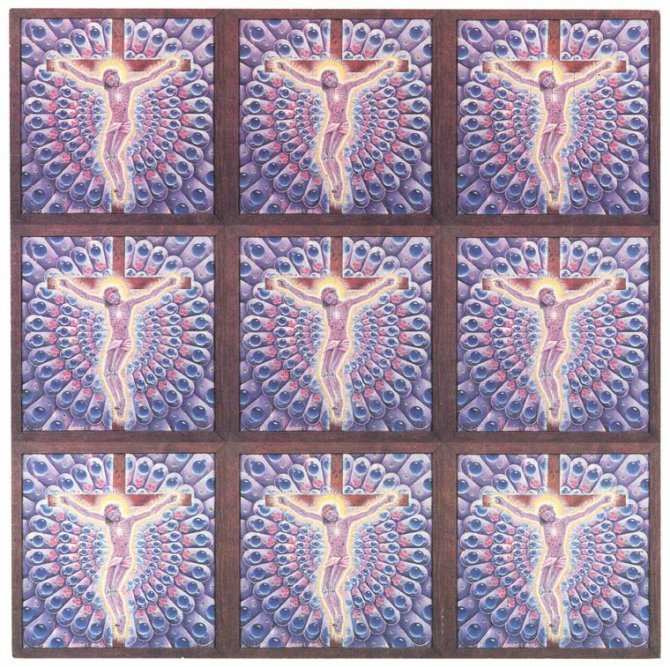 LSD Illegal Images Mark McCloud 3