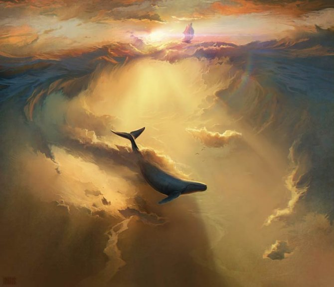 RHADS illustrations 10