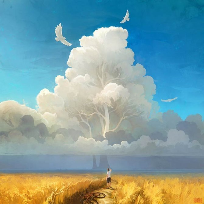 RHADS illustrations 12