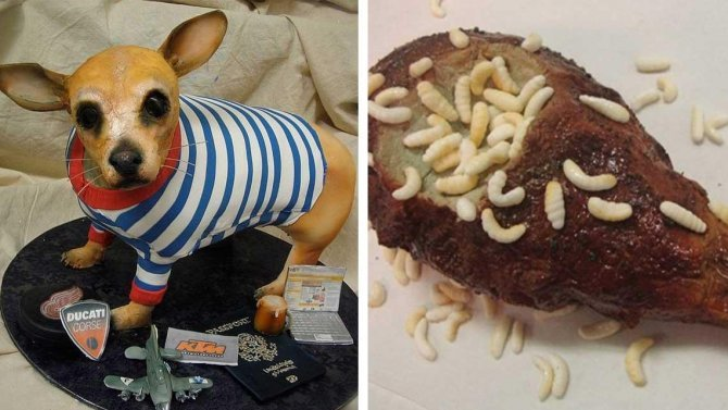 Uncomfortably Realistic Cakes That Will Freak You Out 1