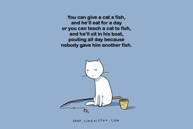 cat doodles 003 880