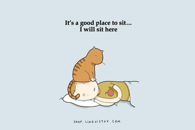 cat doodles 006 880
