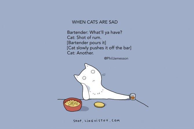 cat doodles 008 880