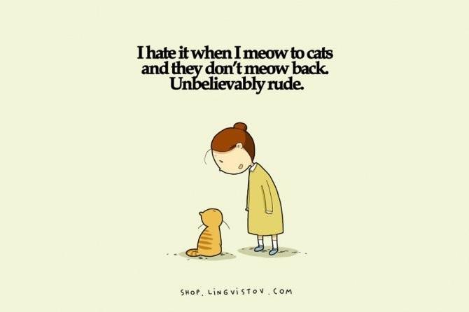cat doodles 009 880