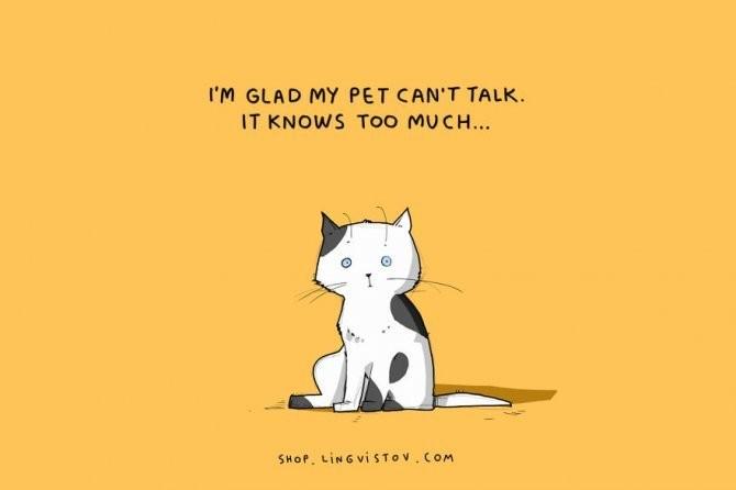 cat doodles 011 880