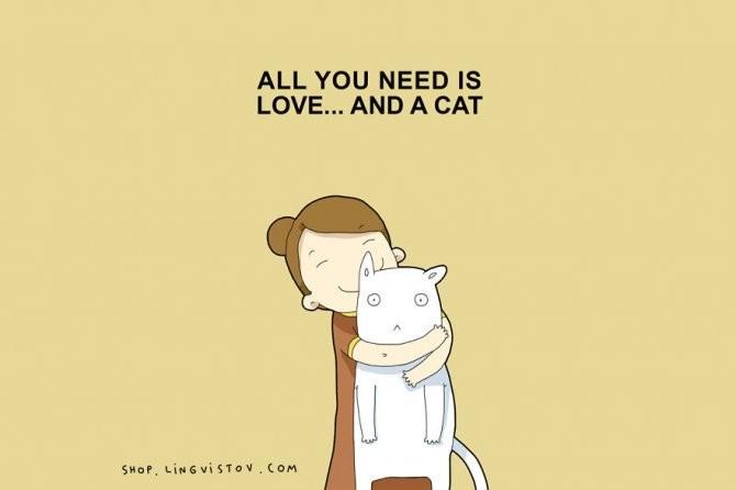 cat doodles 016 880