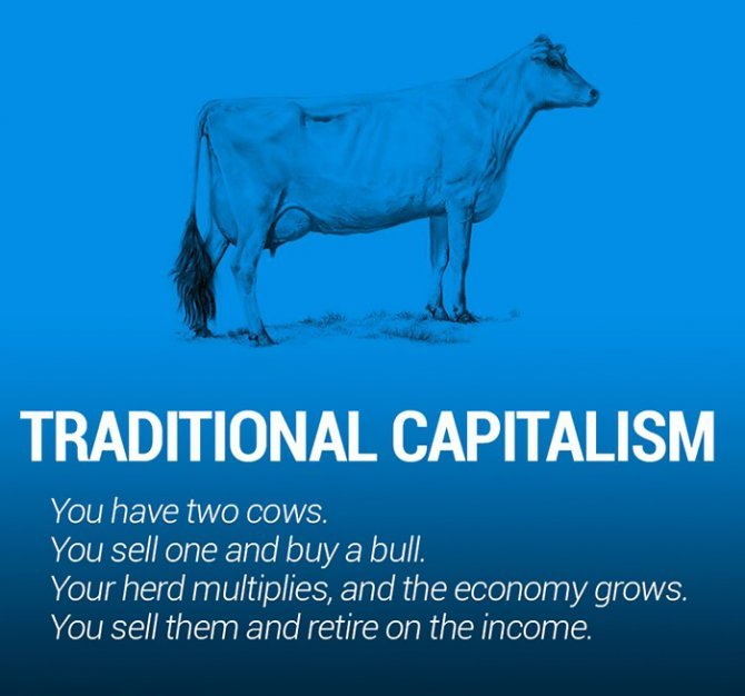 corperation economies explained cows ecownomics 112
