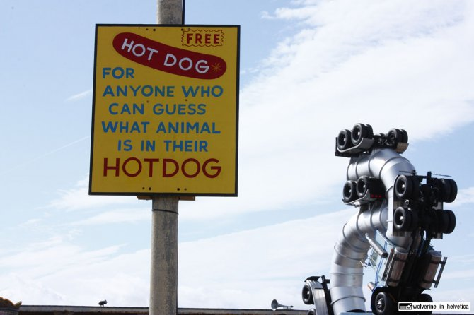Hot Dog gratis per chi indovina che animale c'è nell'hot dog