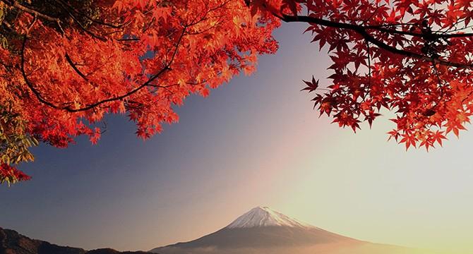 Giappone mezze stagioni errori