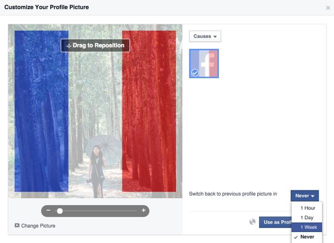 Filtro bandiera francese