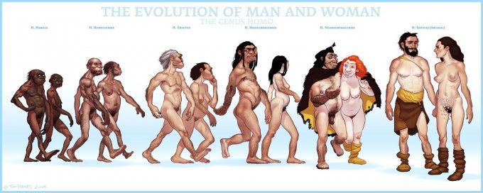 tomrhodes-evolutionofman