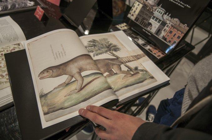 Un volume realizzato insieme al Ministero della Cultura del Messico, che riproduce illustrazioni di flora e fauna antecedenti al 1671. Quando il Nuovo Mondo era ancora nuovo.