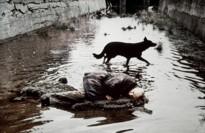 Da Stalker di A. Tarkosky (1979)