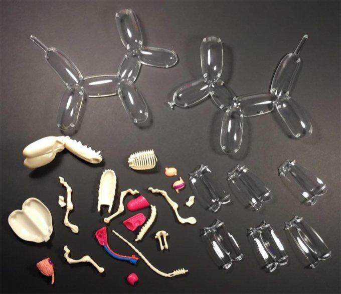 jason freeny anatomia giocattoli