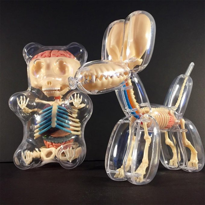 jason freeny anatomia giocattolo