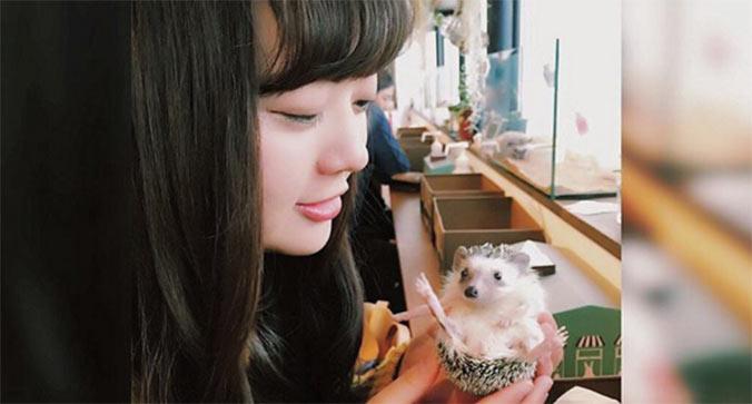 caffe-ricci-tokyo